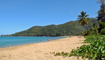 Sainte-Rose (Guadeloupe)